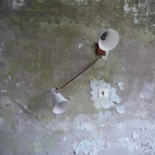 Chernobyl81