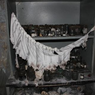 Chernobyl85